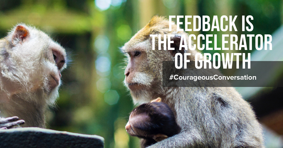 Feedback and a courageous conversation