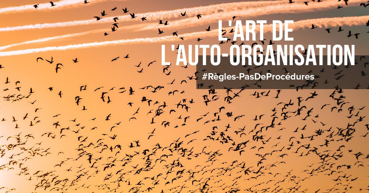 L'art de l'auto-organisation
