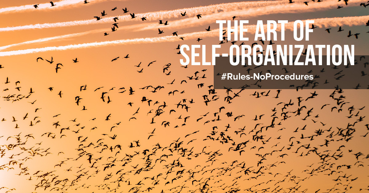 The art of self-organization