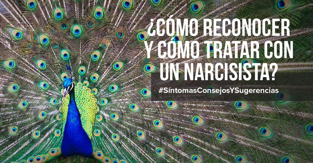 ¿Cómo reconocer y cómo tratar con un narcisista?