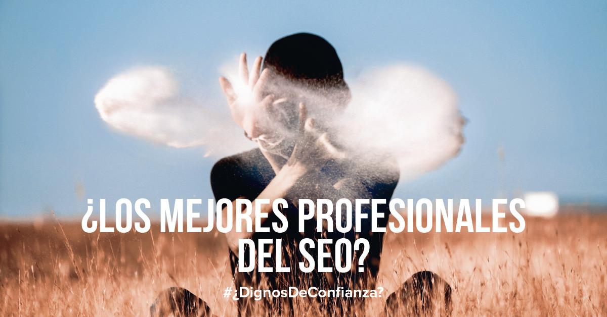 La decepción de hacer negocios con los mejores profesionales de SEO