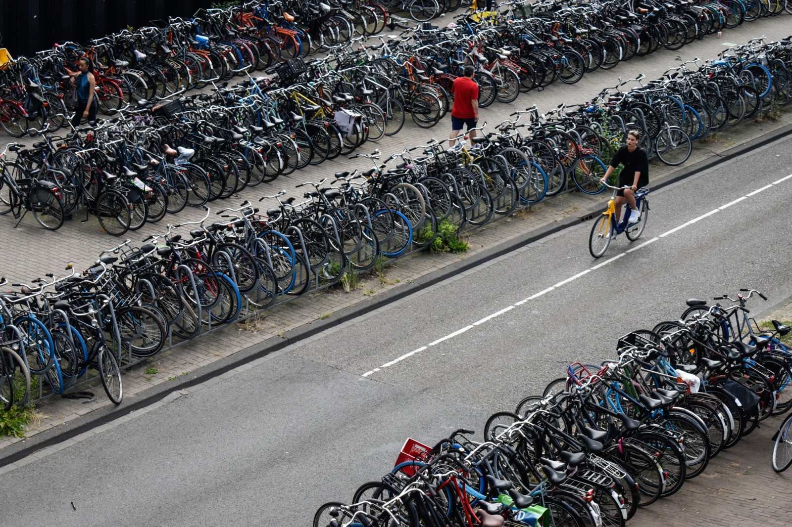 bike-parking-amsterdam