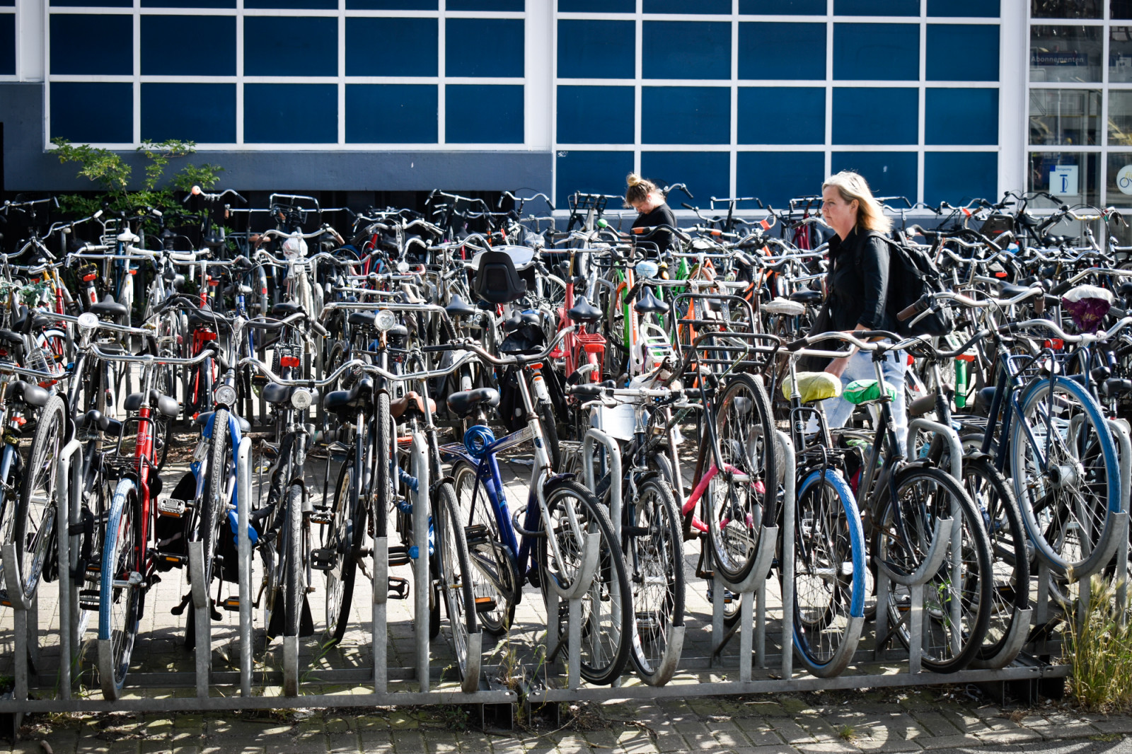 colored-bikes-in-amsterdam-1