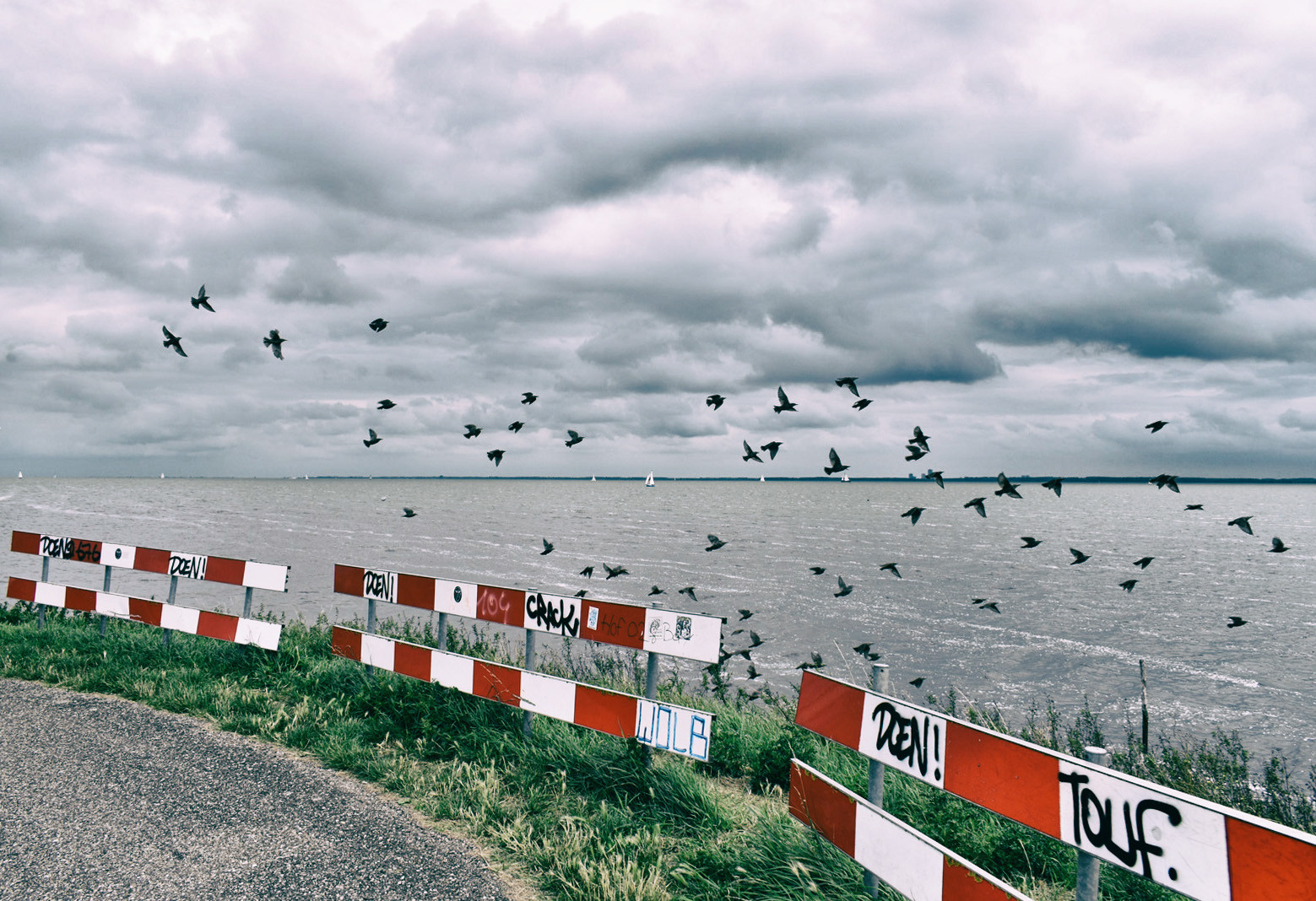 Dutch dikes views with birds and clouds