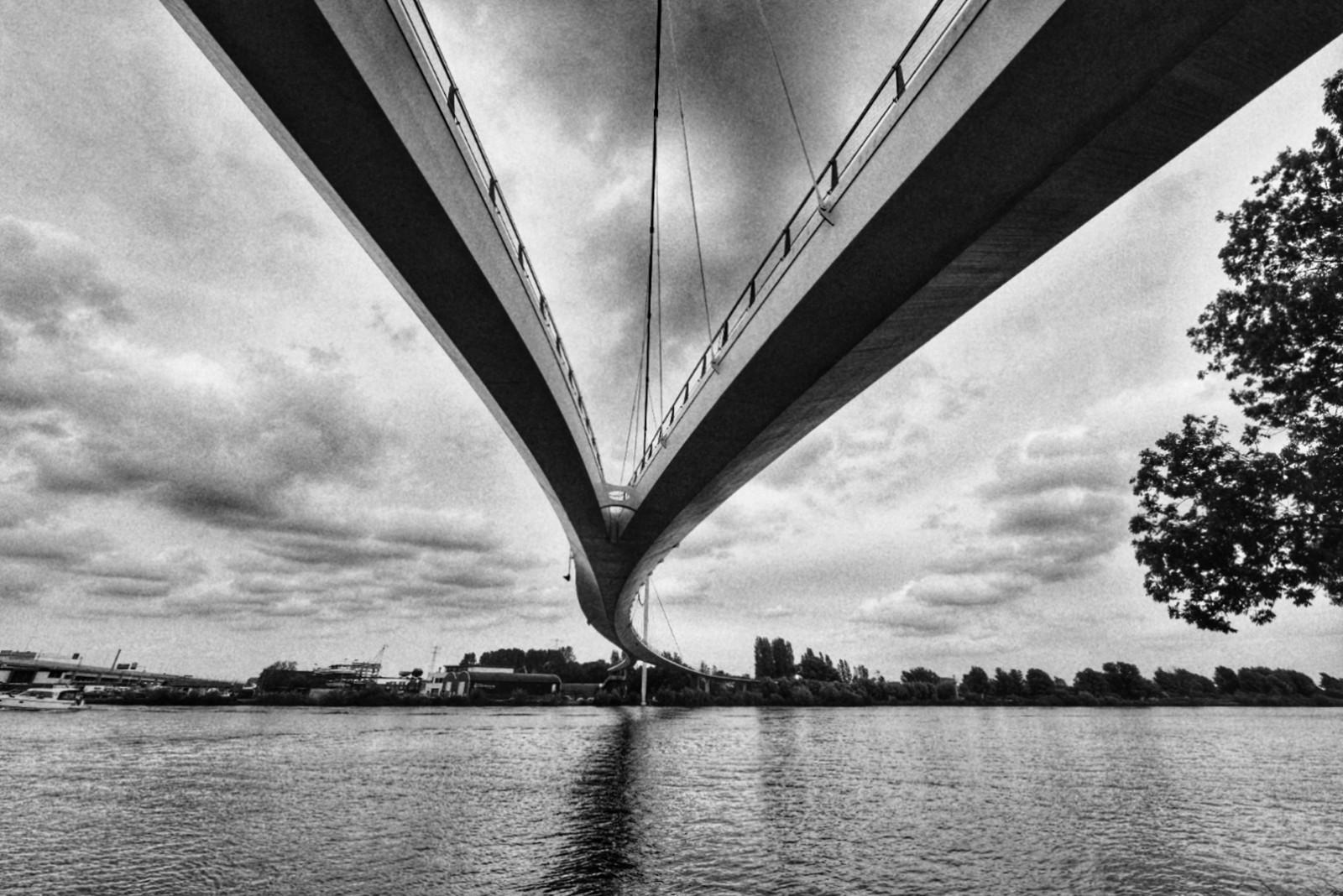 nescio-bridge