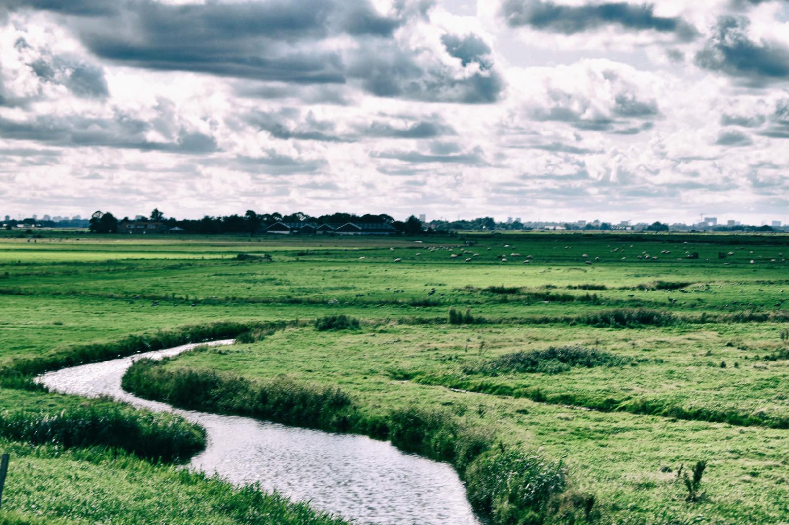 sky-above-polder-landscape