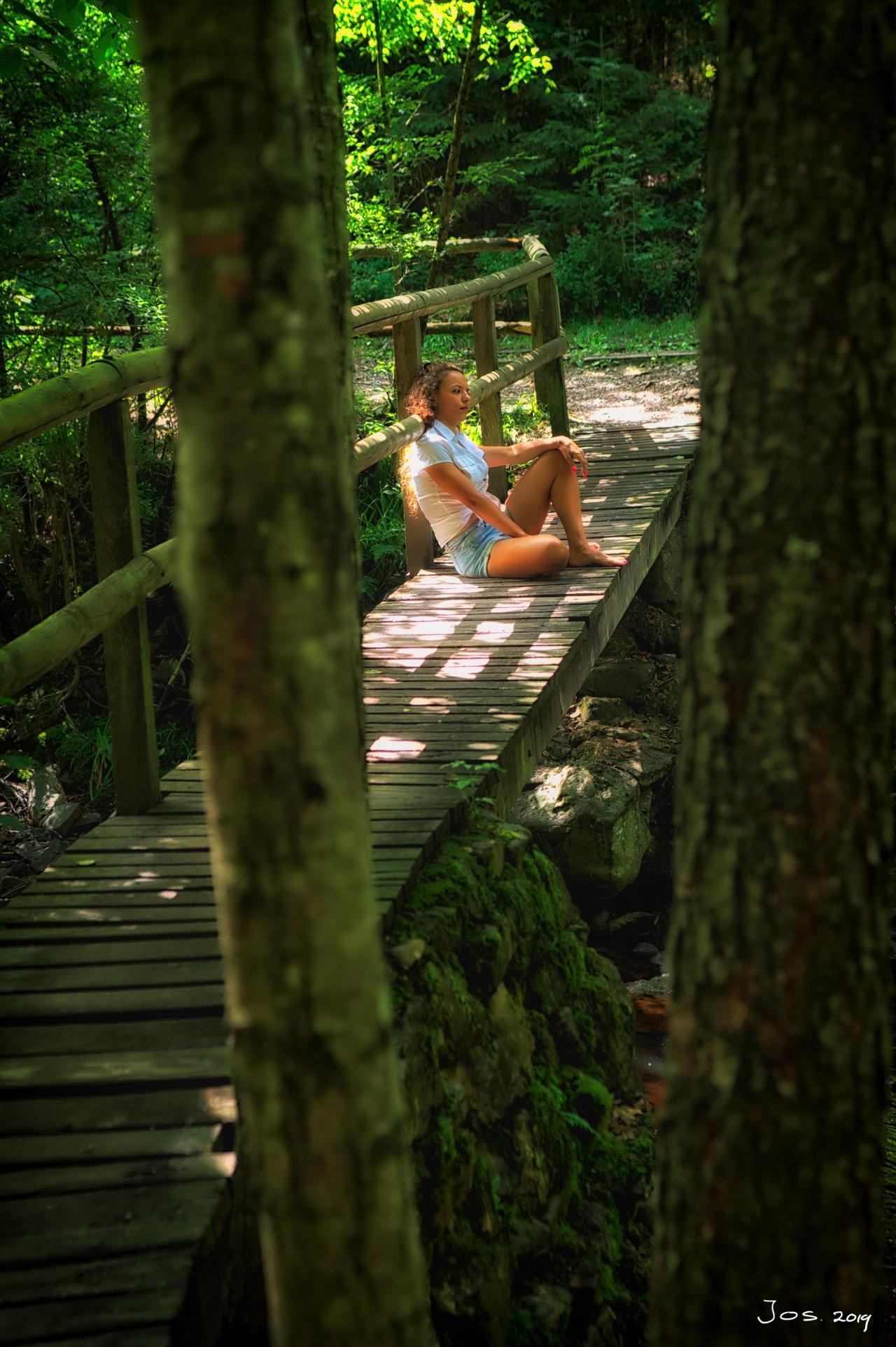 Aprende sobre composiciones en fotografía señora en puentes árboles por Jos Joosten
