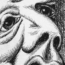 Surrealistische pentekening tips en inspiratie
