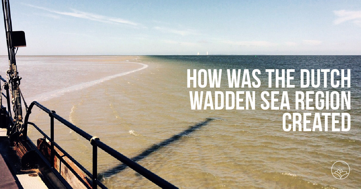 How was the Dutch Wadden Sea region created?