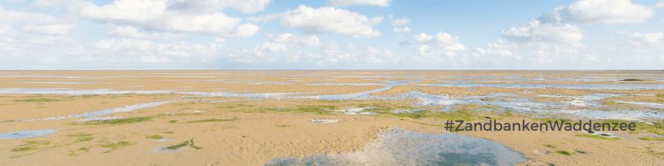 zandbanken-op-de-waddenzee-nederland