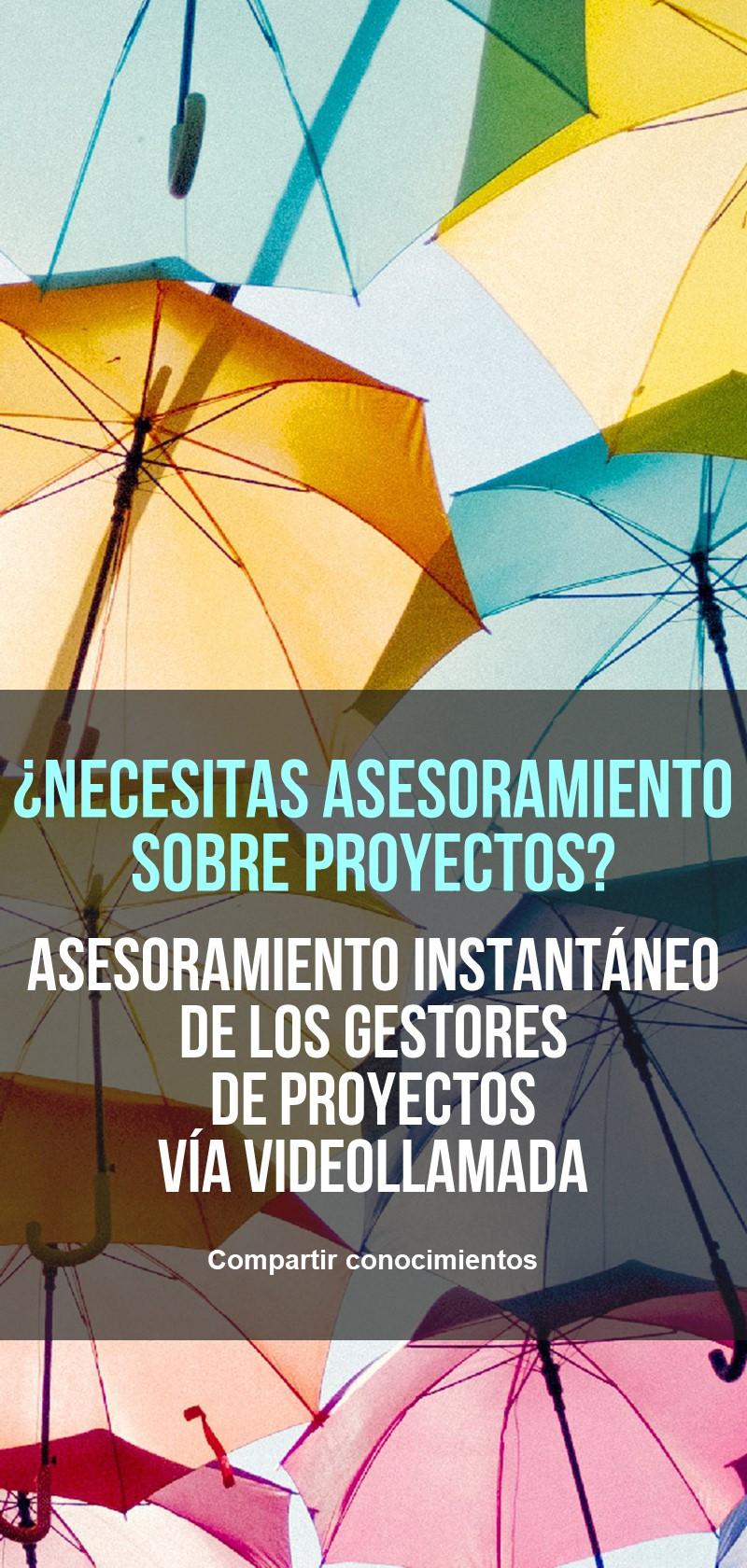 Habilidades de gestión de proyectos