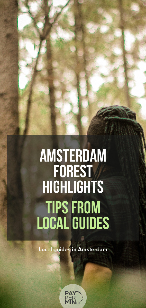 Highlights of the forest of Amsterdam