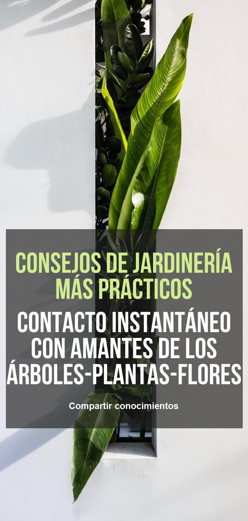 Consejos y trucos de los jardineros