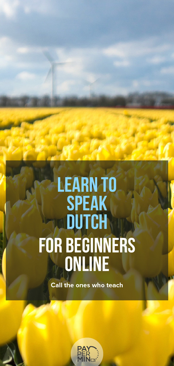 Learn how to speak Dutch for beginners online