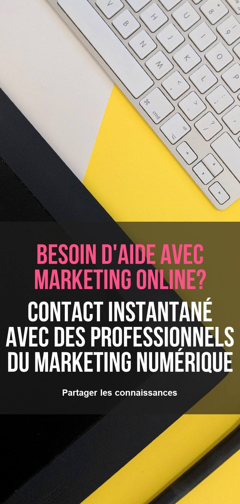 Professionnels du marketing numérique