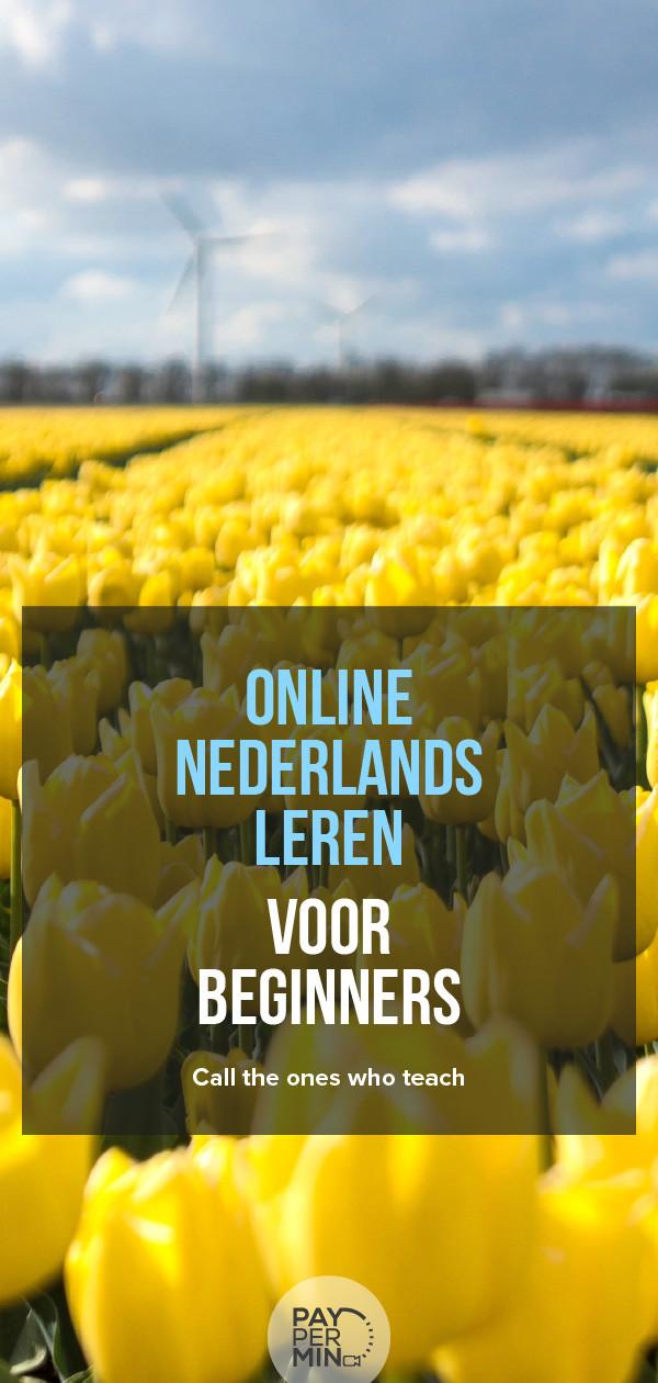 Nederlands leren voor beginners