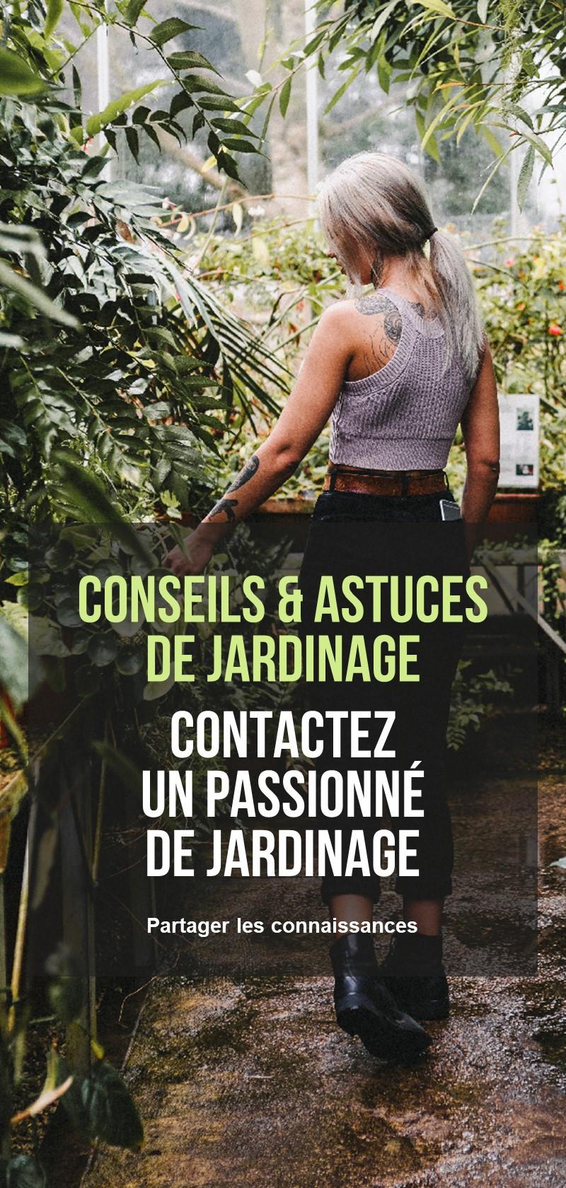 Conseils de jardiniers et de passionnés de jardinage