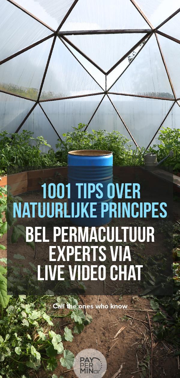 Permacultuur principes en tuinieren