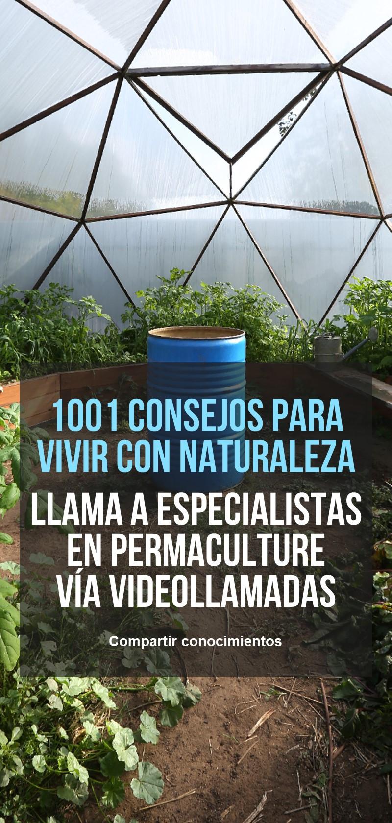 Principios de permacultura y jardinería