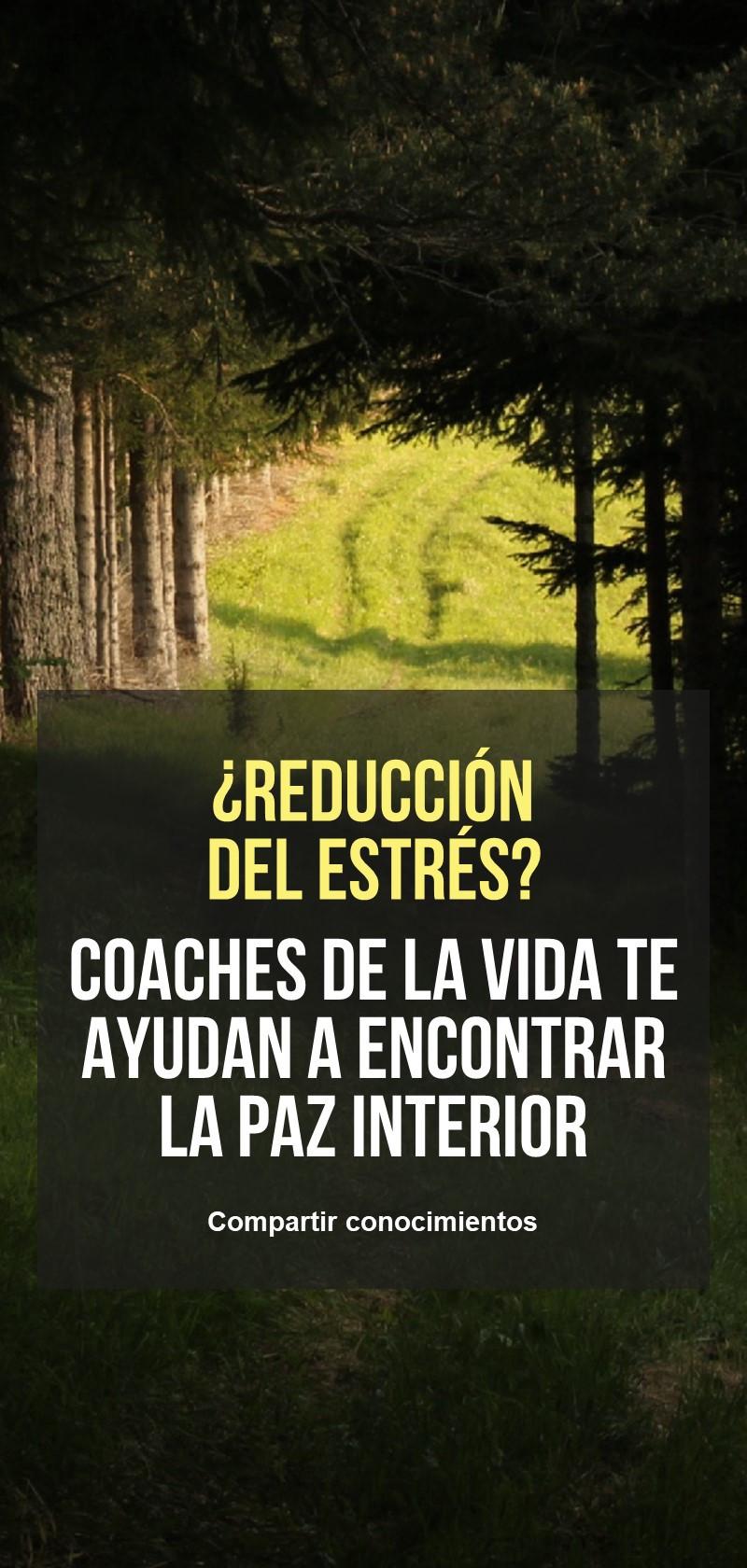 Coaches de reducción de estrés