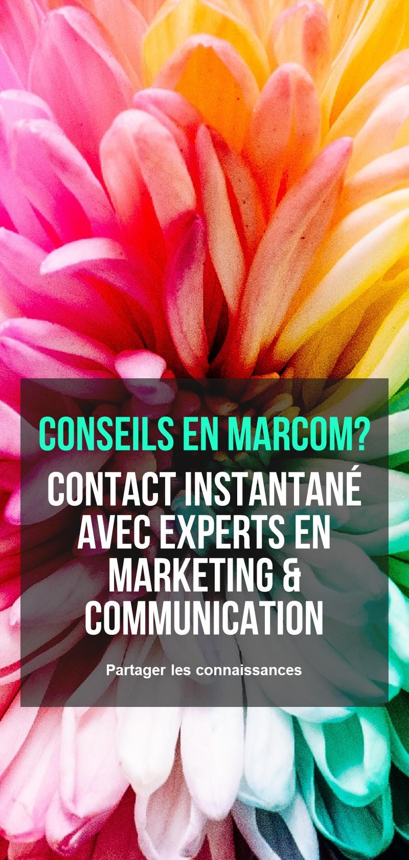 Stratégie et conseils en marketing et communication