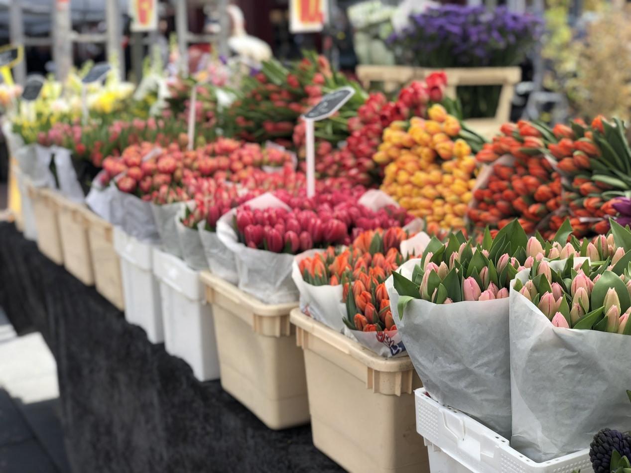 amsterdam-flower-market