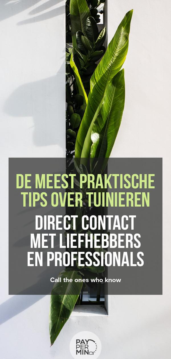 Tips en advies van tuiniers