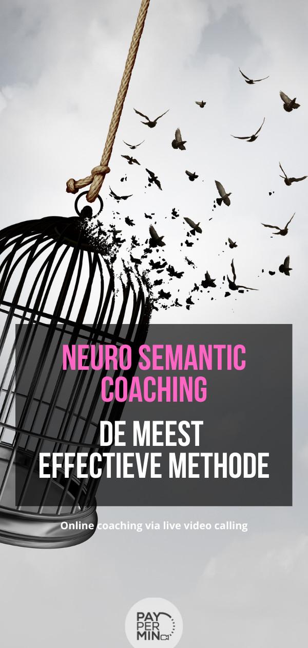 Wat is neuro semantiek coaching?