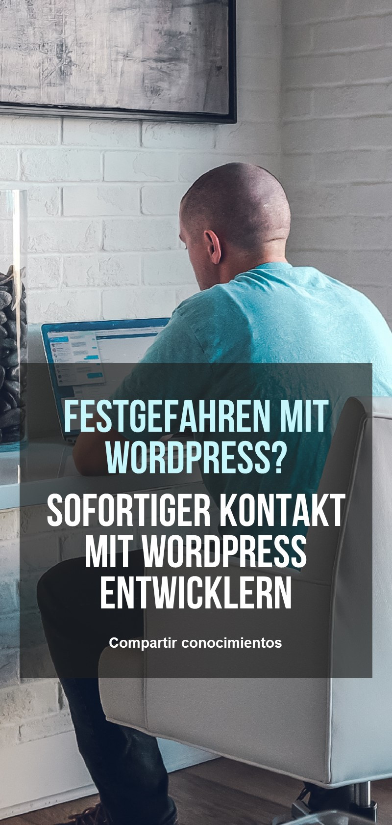 WordPress Entwickler