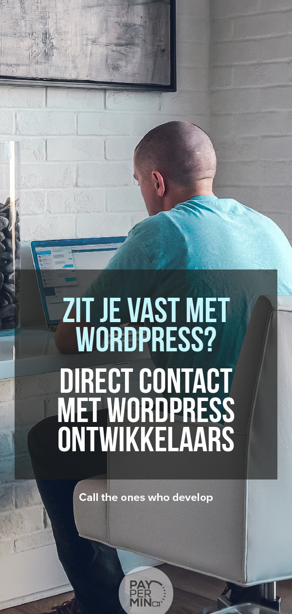 wordpress-ontwikkelaar